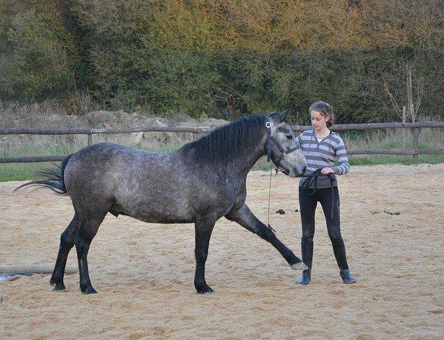 Horse girl 2849377 640 1